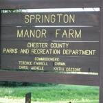 2009 Springton Manor
